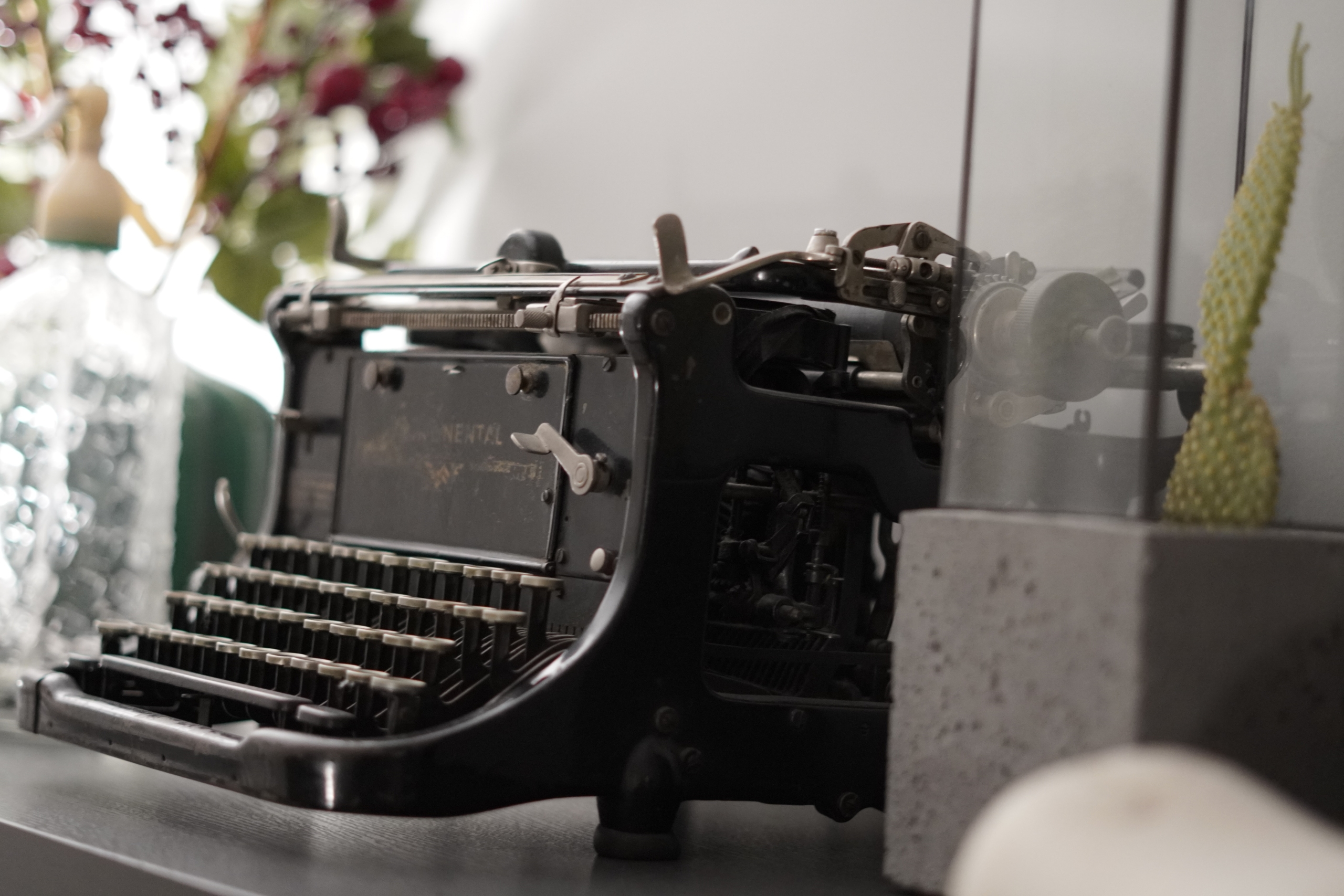 Escrever - Palavra de Autora Clara Novo