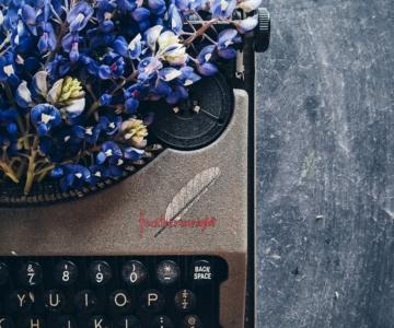 Escrever - Palavra de autor : Célia Correia Loureiro e a vontade de efabular a realidade