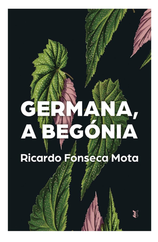 Escrever - Palavra de autor - Livro do autor Ricardo Fonseca Mota