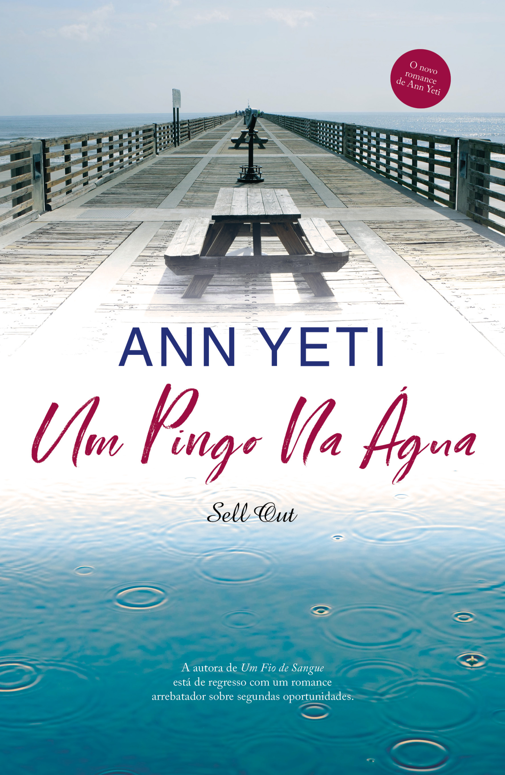 Um Pingo na Água de Ann Yeti