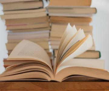 Para bem escrever, continua a ler!